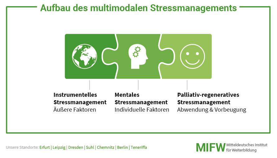 Wie ist das multimodale Stressmanagement aufgebaut?